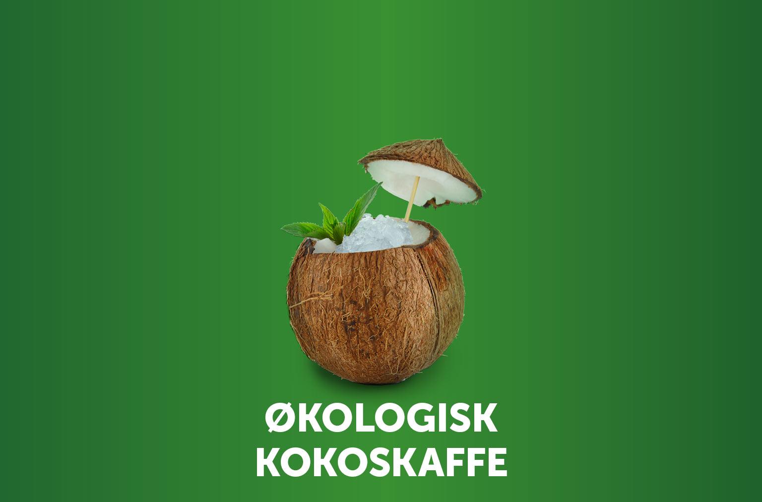 Økologisk Kokoskaffe